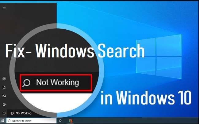 windows search not working